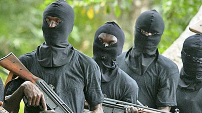 KIDNAPPING: COUNCIL CHAIRMAN OFFERS N5M TO RESCUE FEMALE TWIN IN ZAMFARA
