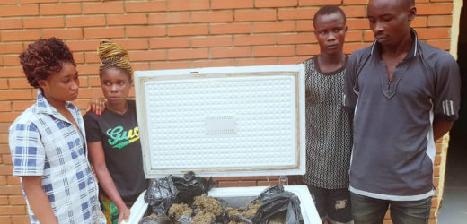 PHOTO: POLICE ARREST FOUR WITH FREEZER LOADED WITH INDIAN HEMP IN OGUN