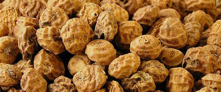 10 HEALTH BENEFITS OF TIGER NUTS
