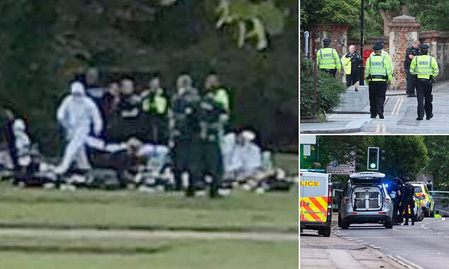 THREE KILLED, SEVERAL OTHERS INJURED AFTER MAN GOES ON STABBING SPREE IN BRITISH TOWN'S PARK