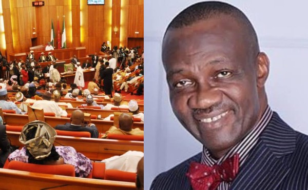 NIGERIAN SENATE FIRES BACK AT NDDC DIRECTOR CAIRO OJOUGBOH, DENIES CLAIM OF ITS MEMBERS RECEIVING N20M AS COVID-19 RELIEF
