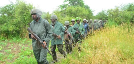 9 BANDITS KILLED BY TROOPS IN FIRE FIGHT ON KADUNA-ABUJA HIGHWAY