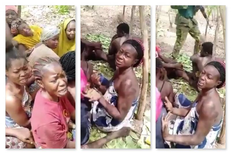 KIDNAPPERS LEAK VIDEO OF FORESTRY COLLEGE STUDENTS, DEMAND N500M