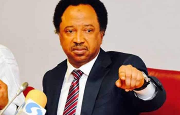 """INSECURITY: """"IF THE WAY THEY ARE GOING AFTER NNAMDI KANU AND SUNDAY IGBOHO IS APPLIED TO BANDITS, THINGS WOULD HAVE BEEN BETTER FOR US IN KADUNA""""- SHEHU SANI"""