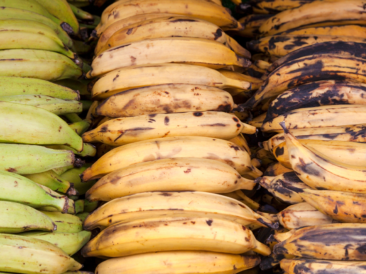 PLANTAIN: THE HEALTH BENEFITS OF EATING THIS FOOD ARE UNBELIEVABLE